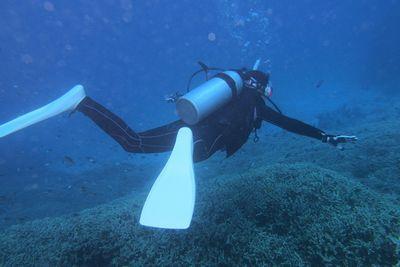 阿嘉島ダイビング
