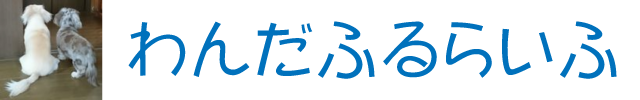 わんだふるらいふ|還暦夫婦と2匹のわんこで日本各地を旅行しています!