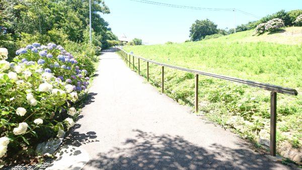 禄剛崎灯台への坂道