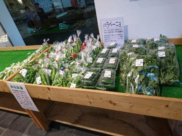 道の駅スプリングスひよし 売店 野菜販売