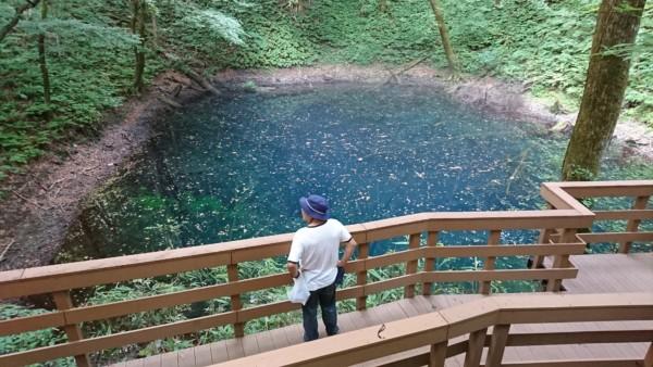 青池とウッドデッキ