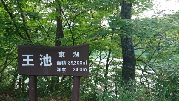 王池 東湖