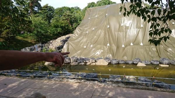 弘前城石垣修理工事