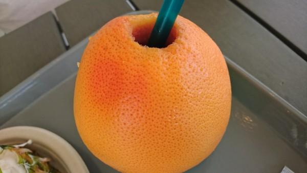 KININARU グレープフルーツジュース
